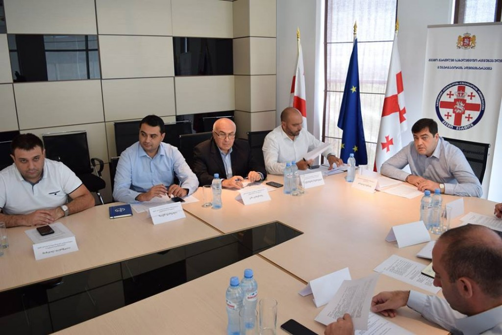 The next meeting of the Advisory Council was held in Kvemo Kartli province