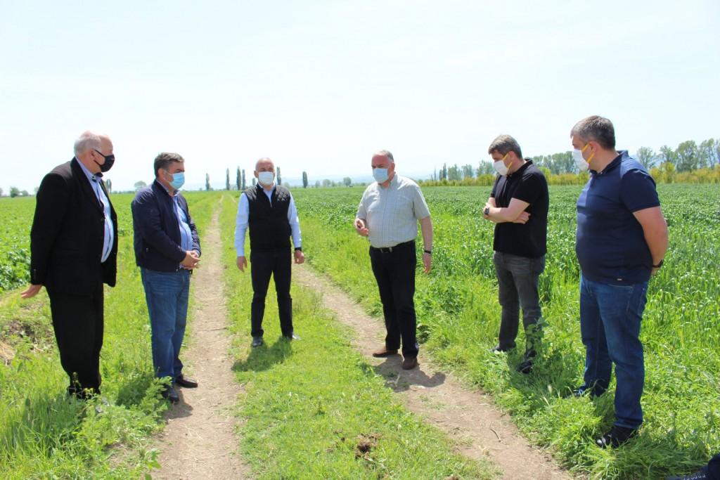 საინფორმაციო შეხვედრა ბოლნისის მუნიციპალიტეტში მცხოვრებ ფერმერებთან