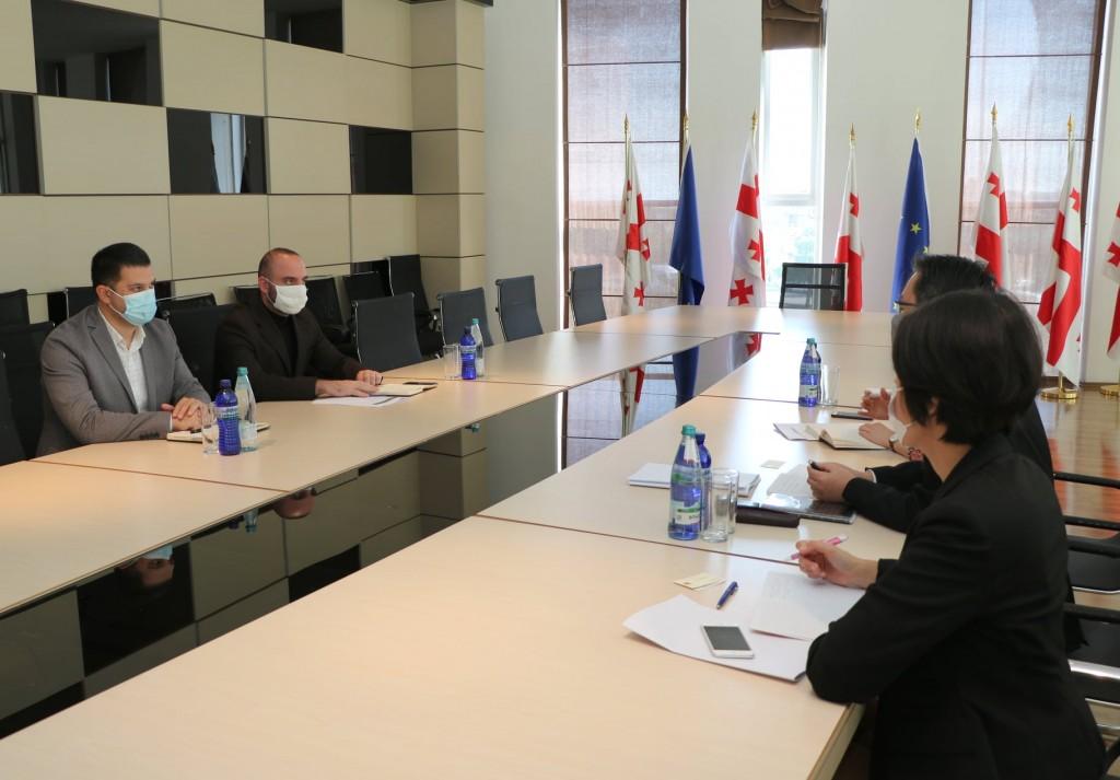 სამუშაო შეხვედრა იაპონიის საერთაშორისო თანამშრომლობის სააგენტოს წარმომადგენლებთან