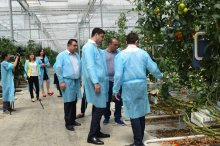 The governor visited two  enterprises in Gardabani