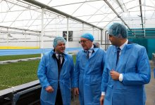 Kvemo Kartli region has a high-tech suit farm